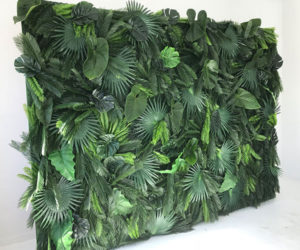 Event Backdrops + Floral Wall Rentals London Ontario image